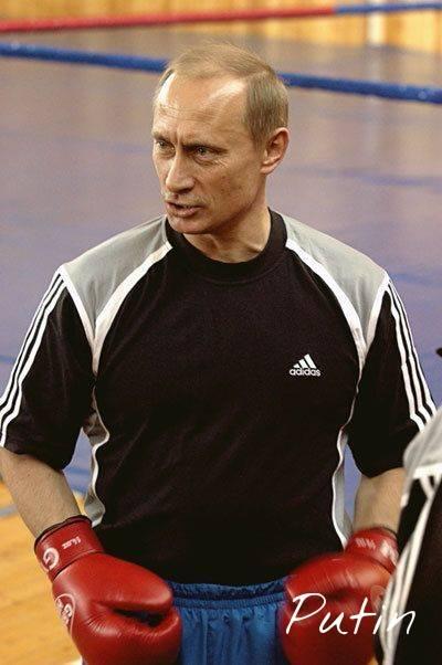 Vladimir Putin boks