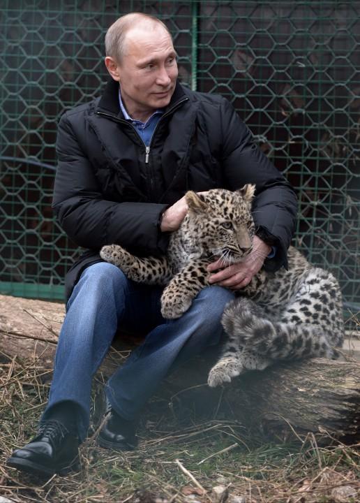 Vladimir Putin kaplan