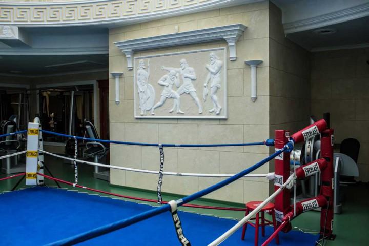 Eski Ukrayna Cumhurbaşkanı Viktor Yanukoviç Sarayı boks sahası