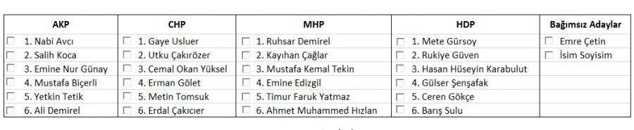 2015 ulusal seçimlerde açık oy pusulası örneği Eskişehir
