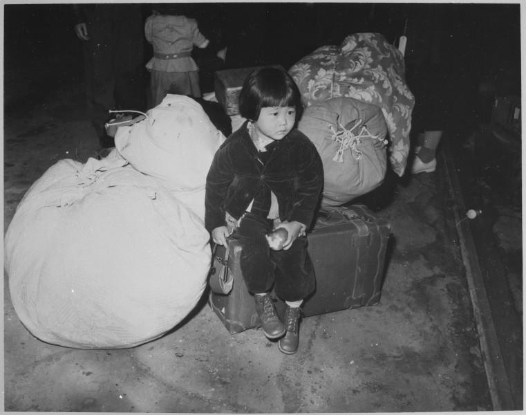 Amerika Japon Toplama Kampı 2
