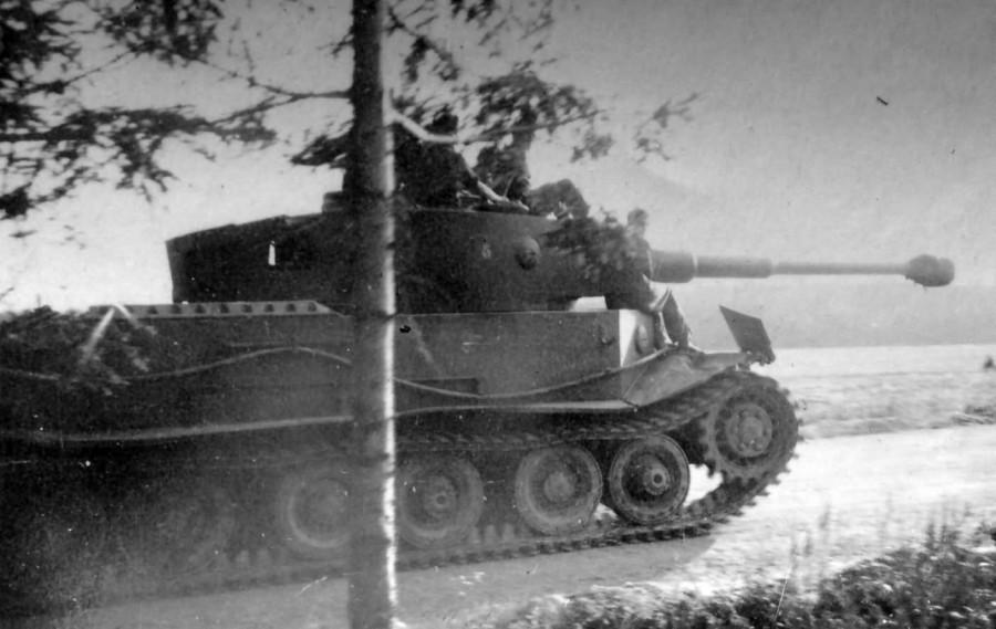 VK4501 Tiger(P)