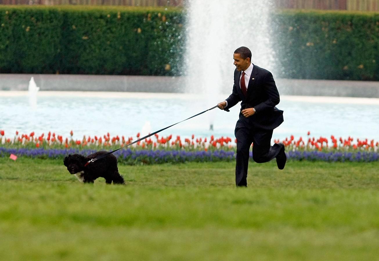 Obama ve köpeği
