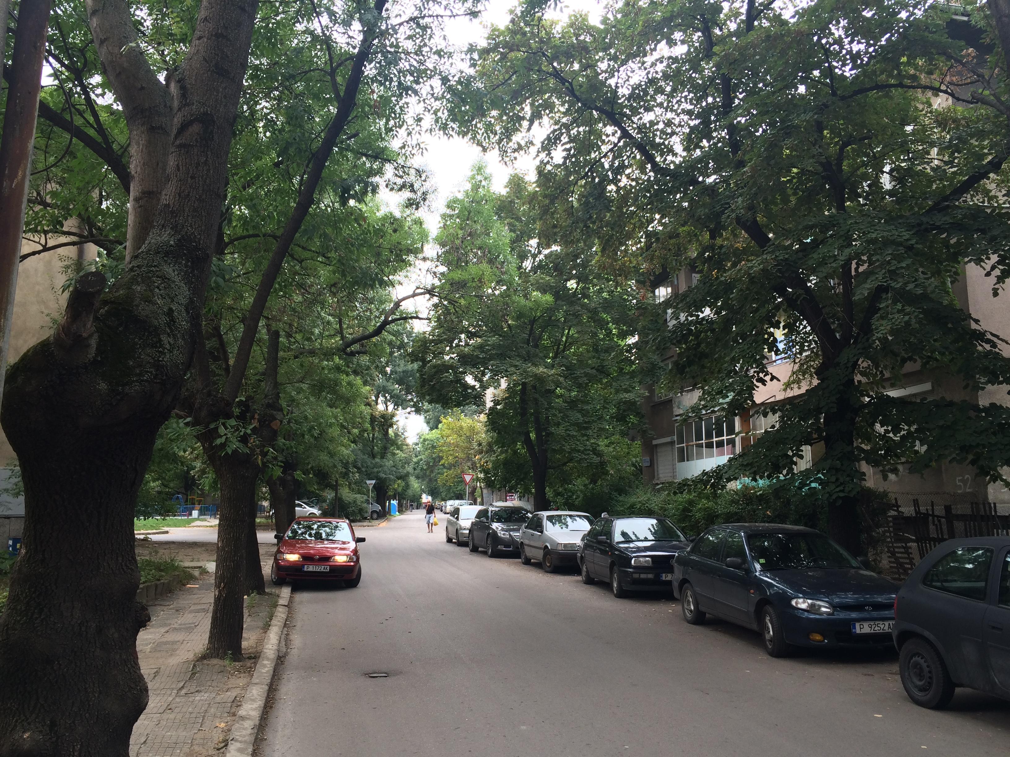 ruscuk-sokaklari-5