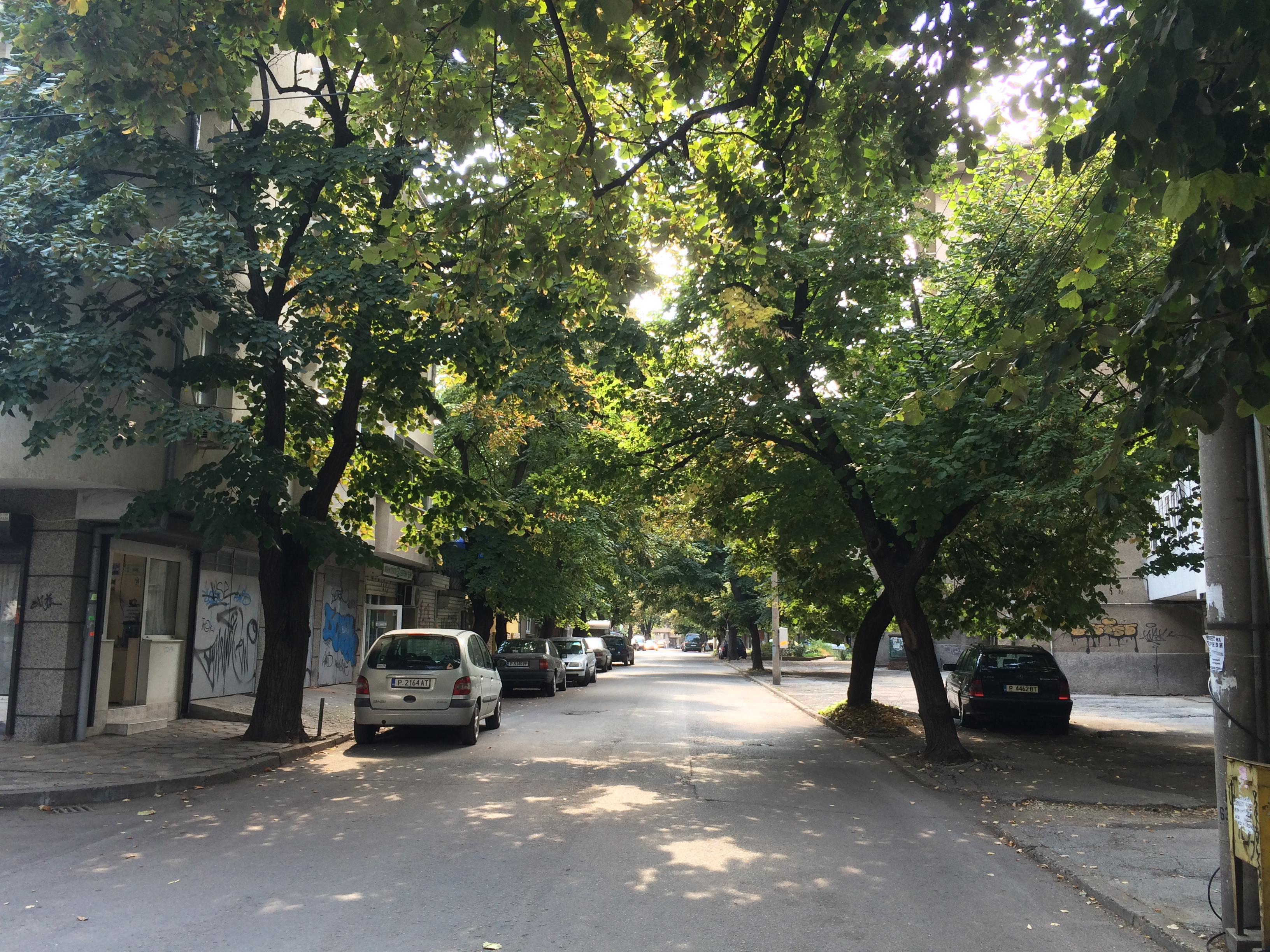 ruscuk-sokaklari-6