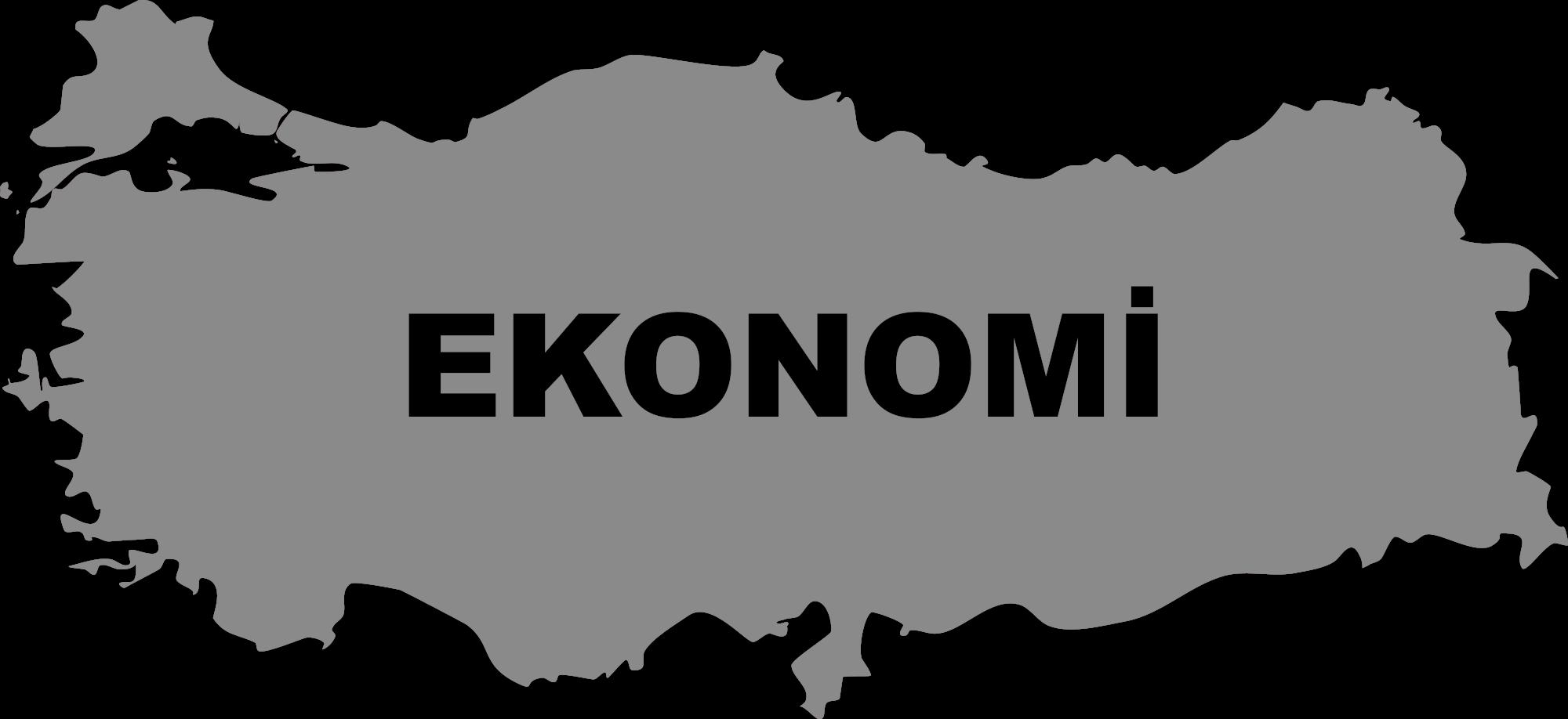 Ukrayna ekonomisi: sorunlar ve çözümleri 66